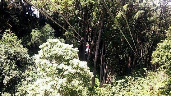 Hawi, Havaí: Zipping through Kohala!