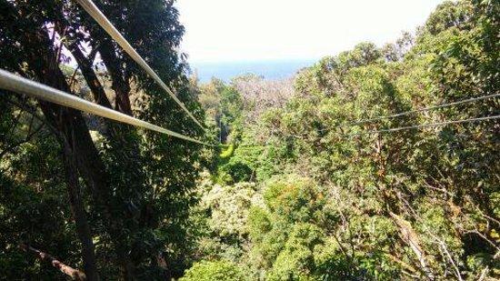Hawi, Havaí: More than 1000 feet of pure fun!
