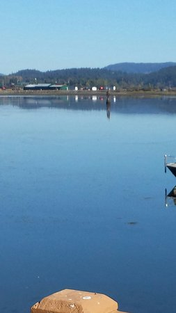 Cowichan Bay Kayaking and Adventure Centre 사진
