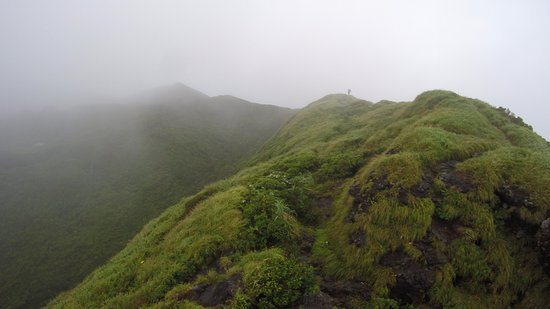 Hachijo-jima, Japão: お鉢回りルート