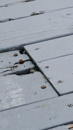 Pahoa, Hawái: Unsafe deck, rusted nails and cracked wood in places