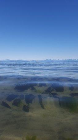 กูร์เตอเนย์, แคนาดา: Sand dollars and the mountain range in the background