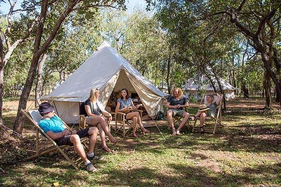 Cooi - Cooinda Lodge, Kakadu National Park