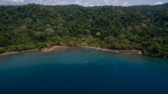 Golfito, Costa Rica: Aerial View of Cativo Bay and Beach