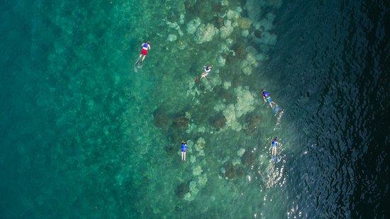 Golfito, Costa Rica: Snorkeling in Golfo Dulce