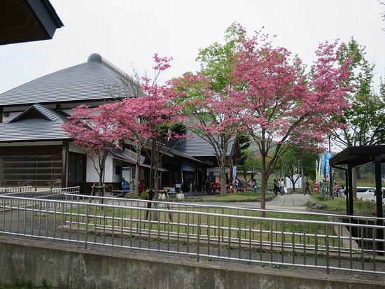 Yanaizu-machi, Japão: 道の駅外観