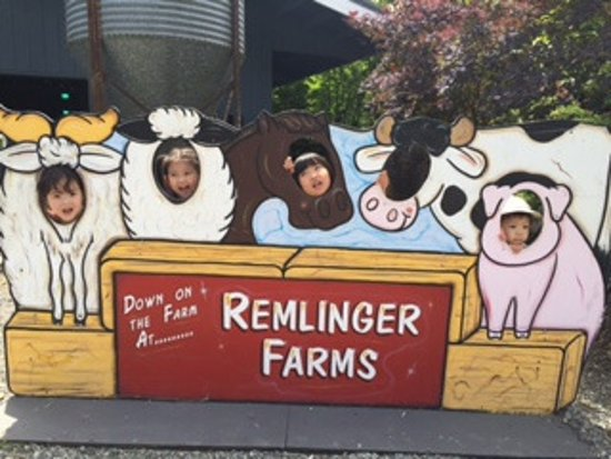 Carnation, WA: Remlinger Farms
