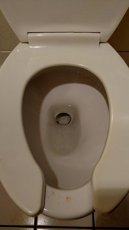 Fort Stockton, TX: The toilet had dried urine on it...was not clean on check in.