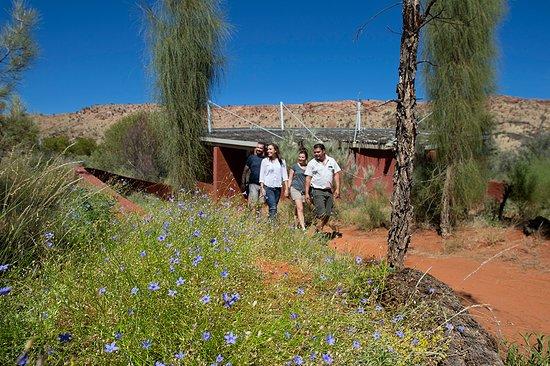 DesP - Desert Park, Alice Springs