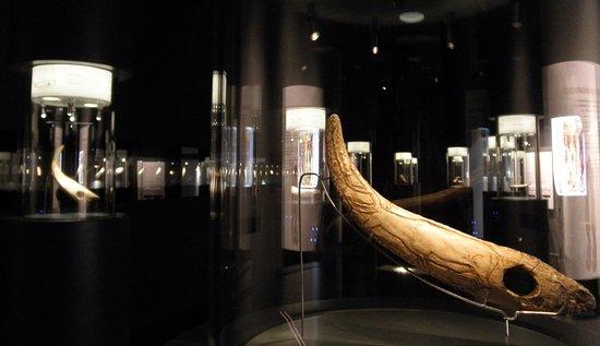 Museo de Prehistoria y Arqueologia de Cantabria: Sala del arte mueble paleolítico