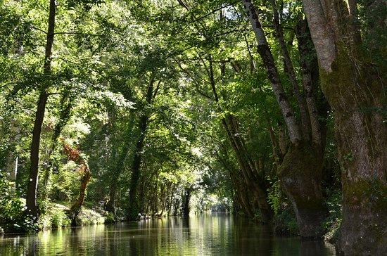 Arcais, Frankrijk: Le Marais