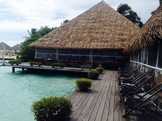 Gangehi Island Resort ภาพถ่าย