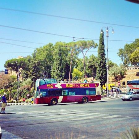 all utica rome bus schedules - photo#36