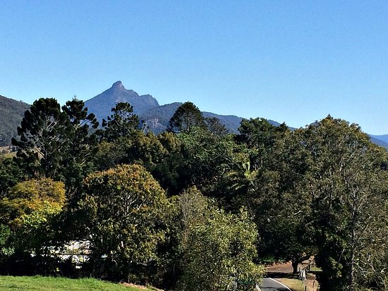 Murwillumbah, Australien: The view from the Tweed Regional Gallery, Mt Warning in the background