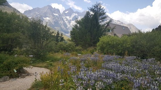 Villar-d'Arene, Francia: Jardin Botanique Lautaret