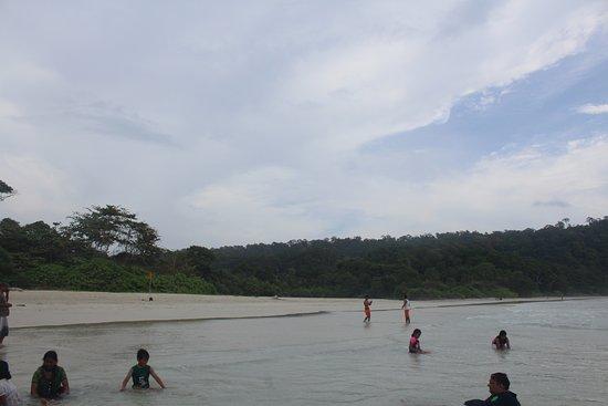 Radhanagar Beach: Beach View!