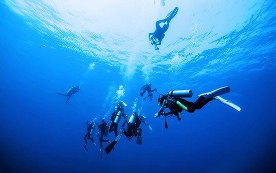 Las Galeras, جمهورية الدومينيكان: Scuba Libre Dive Center in Las Galeras.