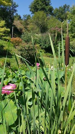 20160816 120848 picture of jardin zen d 39 erik borja beaumont monteux tripadvisor - Beaumont monteux jardin zen ...