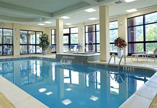 Homestead, Pensylwania: Indoor Pool