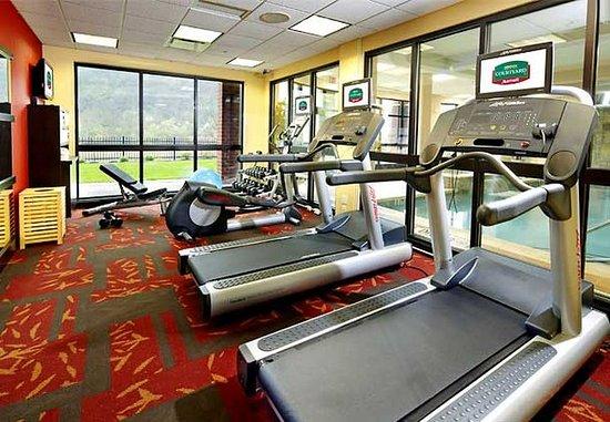 Homestead, Pensylwania: Fitness Center