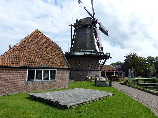 Molen de Traanroeier Oudeschild Texel