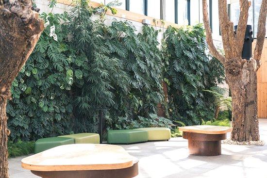 Larrabetzu, España: Sala de bienvenida, cubierta de vegetación y fuentes, para que el ambiente sea fresco y tranquil