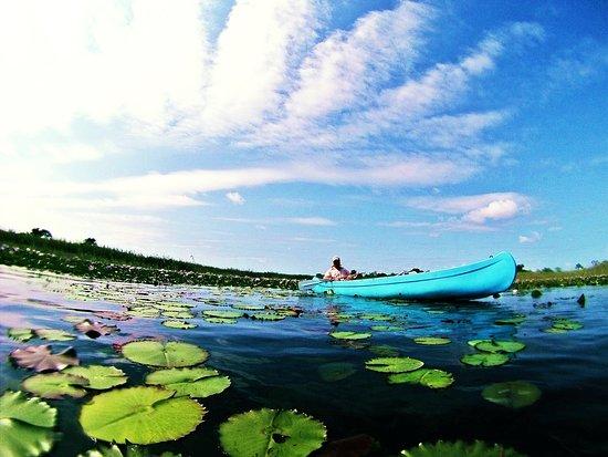 Vilanculos, Mosambik: govuro wetlands