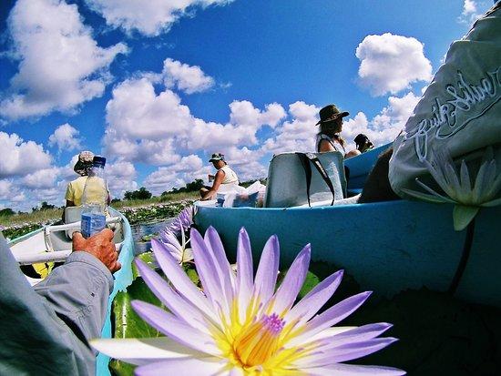 Vilanculos, Mosambik: Govuro Waterways