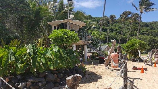 Waimea Bay: 20160813_103834_large.jpg