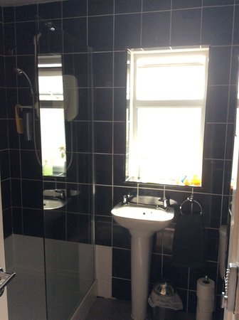 Llwynygog Guest House: Shared shower room