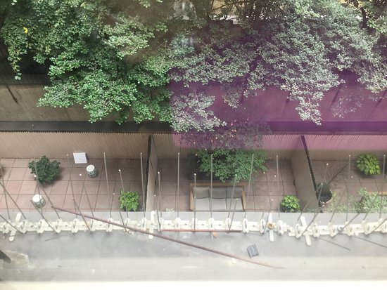 Gardens NYC–an Affinia hotel: photo0.jpg