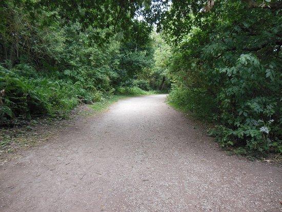 Nottinghamshire, UK: percorso
