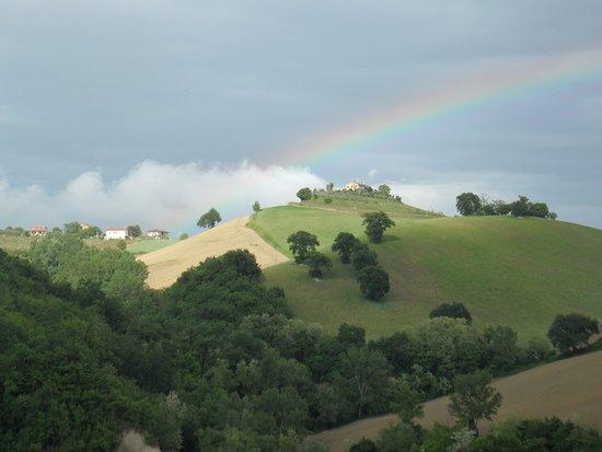 Montelparo, Italy: View from terrace