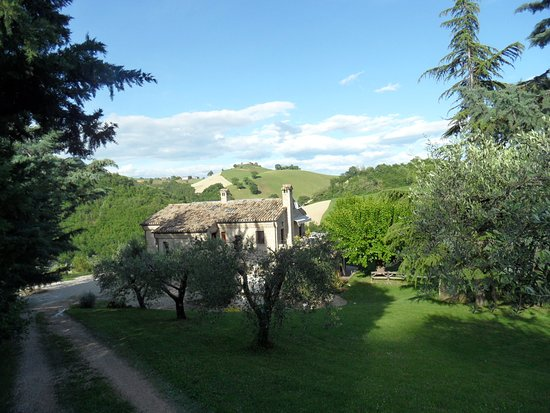 Montelparo, Italy: View of farmhouse from top of the drive