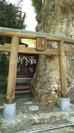 Tsukiiizumi Shrine
