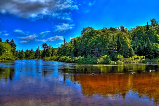 Singing Waters Campground: Moose River on a sunny day