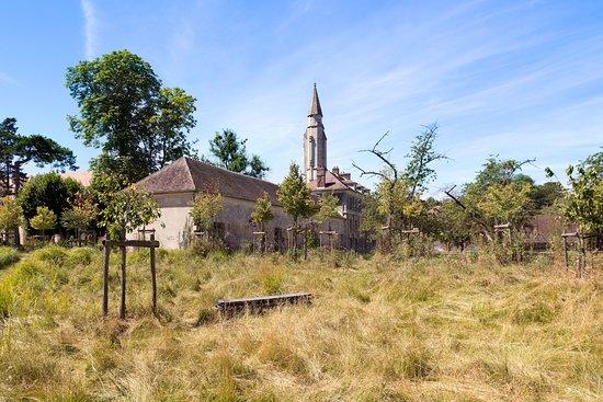 Royaumont Abbey: Le jardin ... un peu en friche !