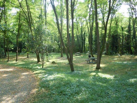 Parc des Coteaux d'Avron