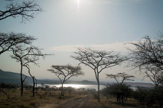 Spioenkop Nature Reserve: Uitzicht over het meer