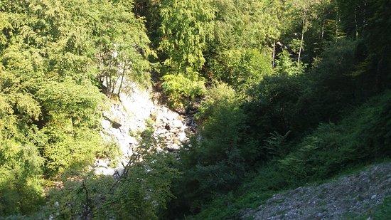 Górna Sabaudia, Francja: vue du parc
