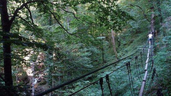 Górna Sabaudia, Francja: parc