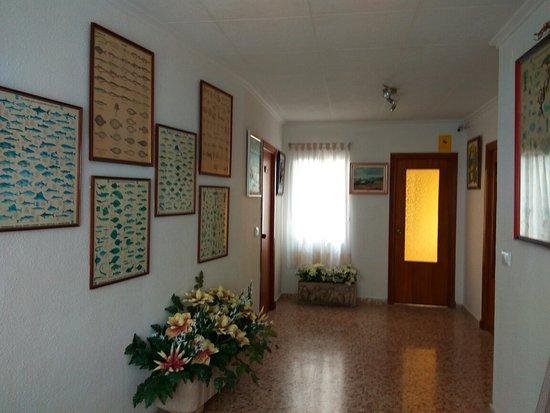 San Pedro del Pinatar, Spain: IMG_2016-08-17_130532_large.jpg