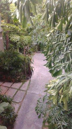 Nora Buri Resort & Spa: Subida a la habitación