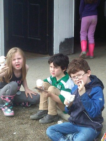 Moycullen, Irlanda: Cooling down with ice cream from Mr. Whippy to finish off our summer pony camp. Well done to eve