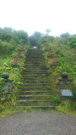 Bantry House & Garden: IMAG2338_large.jpg