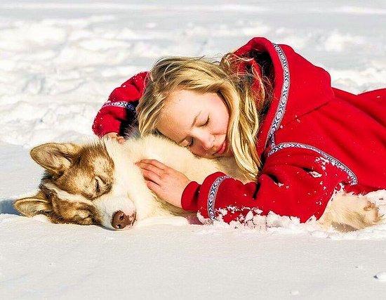 Ely, MN: Sled dog lovin'