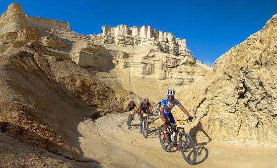 Dødehavet, Israel: Biking in the desert