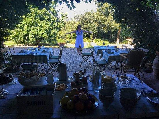 Villa La Lodola: photo6.jpg