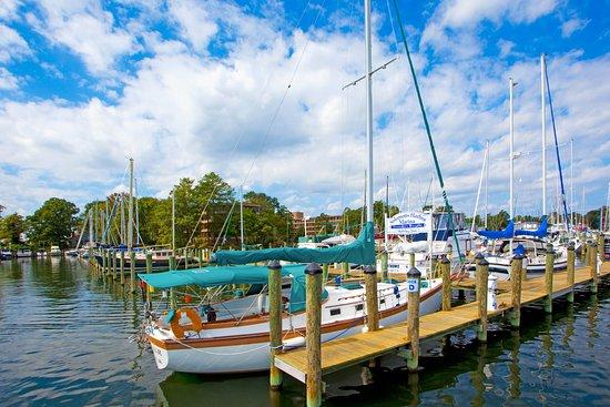 Solomons, Мэриленд: Scenery/Landscape