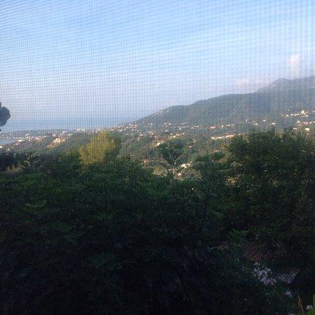 Castellar, Frankreich: photo5.jpg